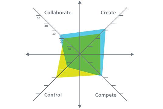 Culture Models