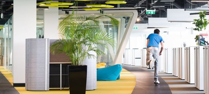 Biophilia in the Workspace