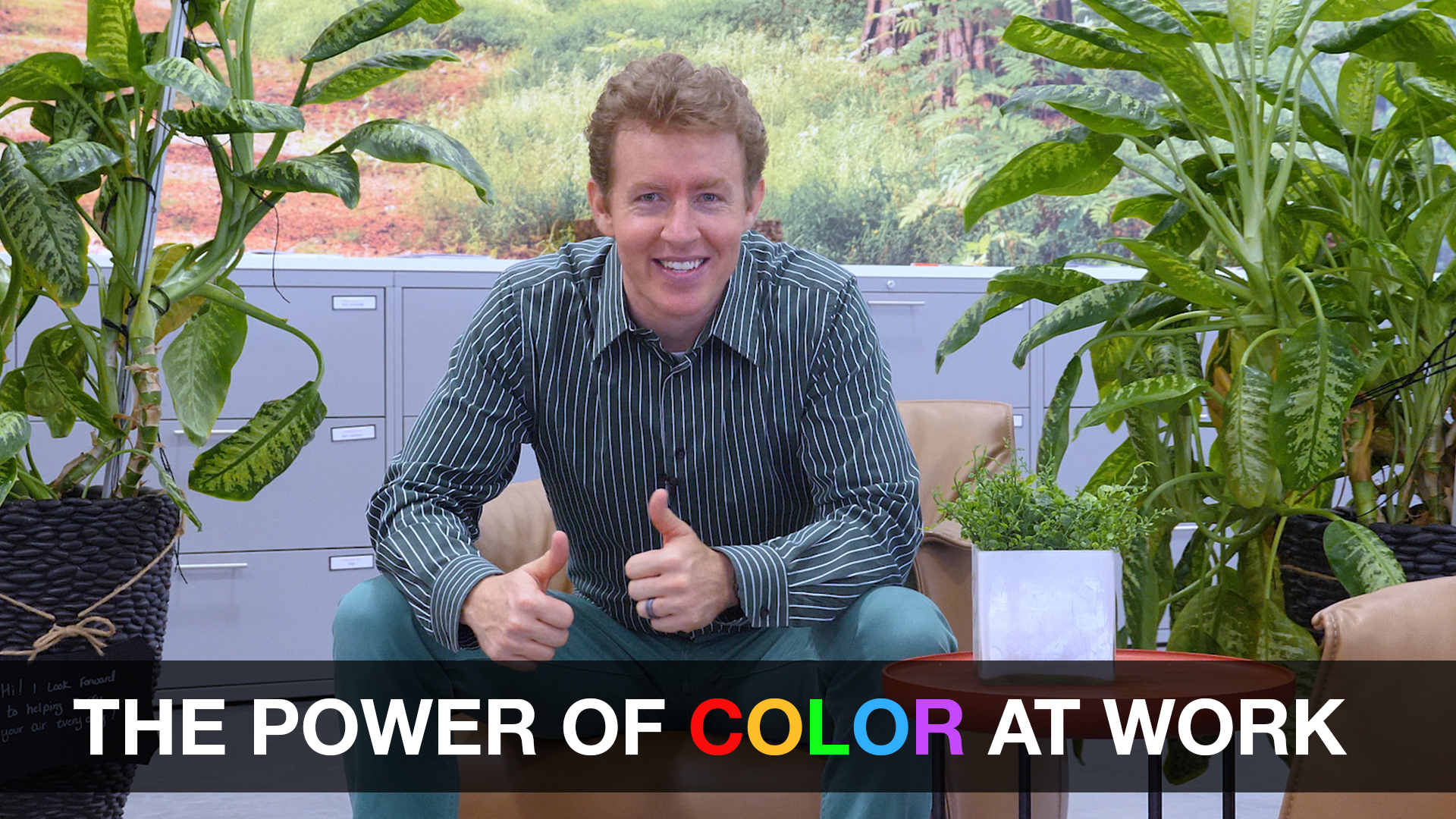 The Power of Color at Work